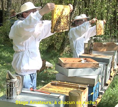 Formation Apiculture Bio Sud-Ouest Toulouse