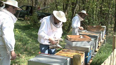 apiculteur urgence