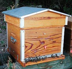 une ruche bois prot g e par l 39 huile de lin. Black Bedroom Furniture Sets. Home Design Ideas