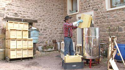 trempage d 39 un corps de ruche dans un f t d 39 huile de lin bouillonnant. Black Bedroom Furniture Sets. Home Design Ideas